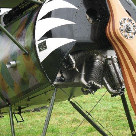 James Fahey Fokker DVIII Walkaround 22