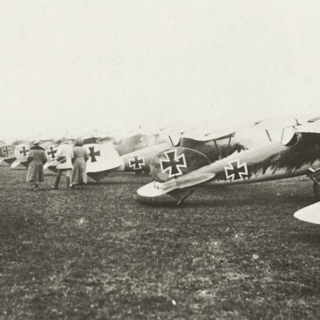 033 Albatros Line Up