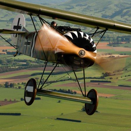 Fokker DVIII Head On