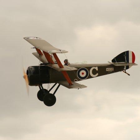 Soptripe 023 Fly