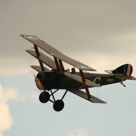 Soptripe 027 Fly
