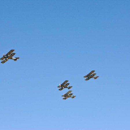 RAF Tribute