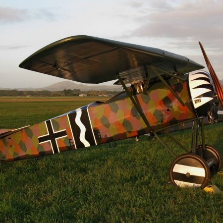 James Fahey Fokker DVIII Walkaround 2