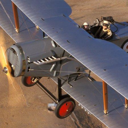 Classic Fighters 2003 Bristol Fighter 4