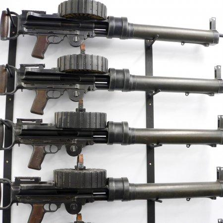 Gun Room Lewis Guns Wall Mounted